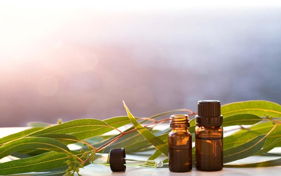 Aromatherapy Essential Oils To Support The Lymphatic System Lymphatic Therapy Services